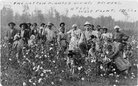 Planters In The South by File Cotton Planter And Pickers1908 Jpg