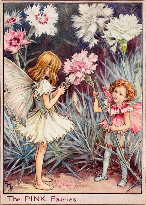 Flower Fairies Of The Garden The Pink Fairies Flower Fairies