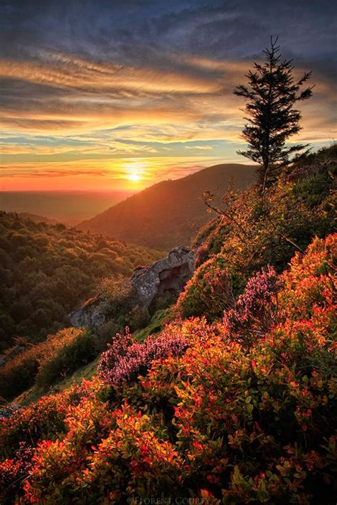 Fall 5 Steps To Your Fresh Beautiful Glowing Skin by Sunset To God Beautiful