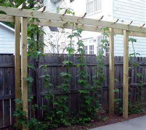 Hops Trellis 301 Moved Permanently