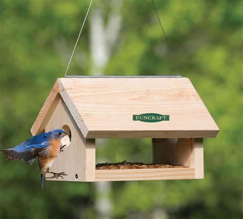 duncraft com duncraft 5618 hanging bluebird feeder