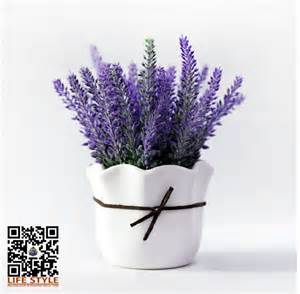 Chinese Vases For Sale Online Get Cheap Lavender Vase Aliexpress Com Alibaba Group