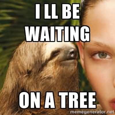 Sloth Whisper Meme - 30 very hilarious sloth whisper meme stock golfian com