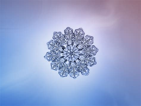 the most beautiful snowflake photos you ll ever see