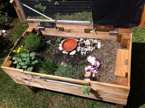 terrario per tartarughe di terra giardino accoppiamento e riproduzione terrario all aperto per baby