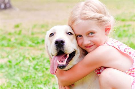 7 Kid Friendly Pets by Top 10 Kid Friendly Dogs