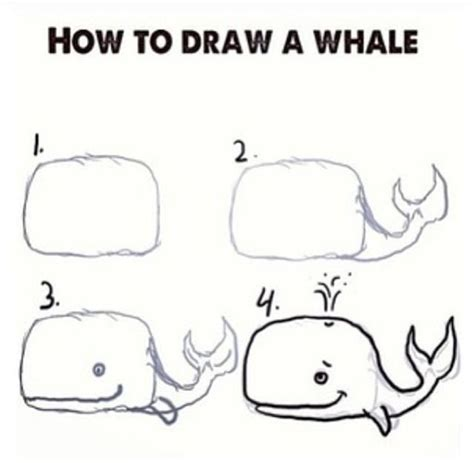 how to draw a goldendoodle whale doodle how to draw whales