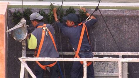 vertical garden construction large vertical gardens