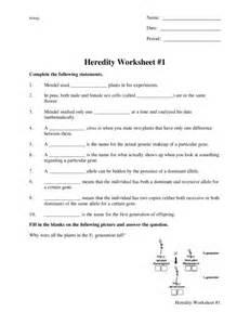 image gallery heredity worksheets