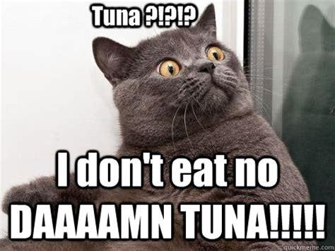 Tuna Meme - tuna i don t eat no daaaamn tuna conspiracy