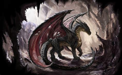 dark dragon dark dragon computer wallpapers desktop backgrounds