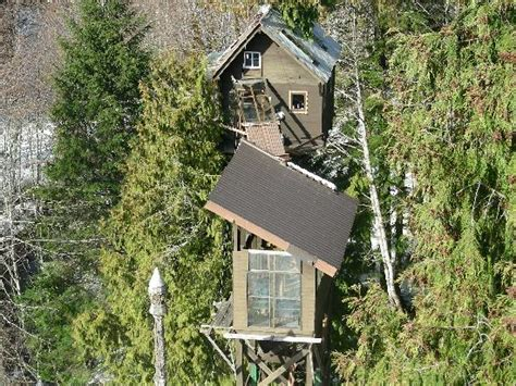 cedar creek treehouse washington cedar creek treehouse ashford wa cground reviews