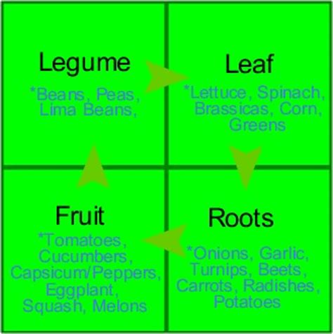 garden crop rotation a simple system crop rotation and
