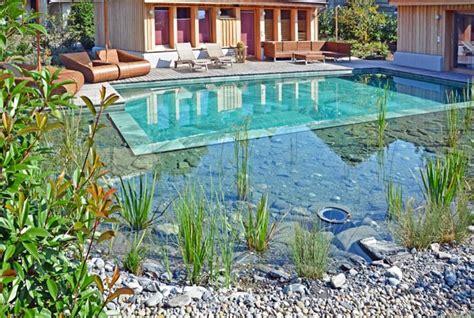 schwimmteich kosten preise schwimmteich kosten naturpool