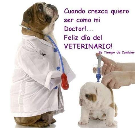 imagenes feliz dia del veterinario feliz d 237 a del veterinario frases citas y poemas pinterest