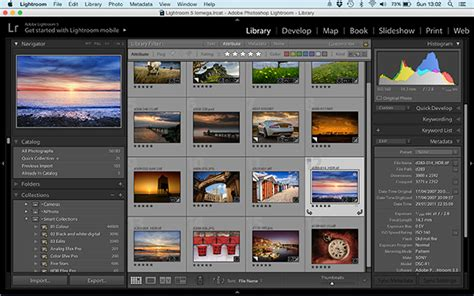 photoshop software the differences between photoshop and lightroom explained