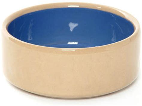 Water Dish Corner guinea pig water requirements