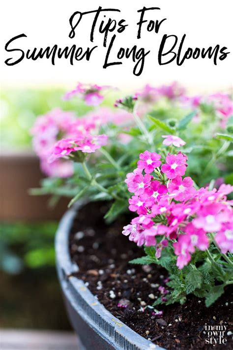 Flower Gardening 101 1870 Best Affordable Diy Decorating Ideas Images On Furniture Makeover Home And How