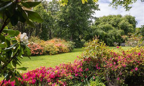 imagenes de jardines con veraneras el jard 237 n del ranco revista ed estilo y decoraci 243 n