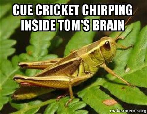 Crickets Chirping Meme - meme