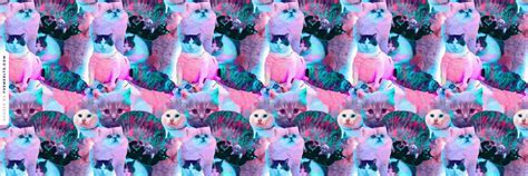 Psychedelic Cats Twitter Header   Hipster Wallpapers