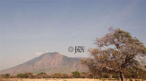 film epic java download image gallery epic jawa