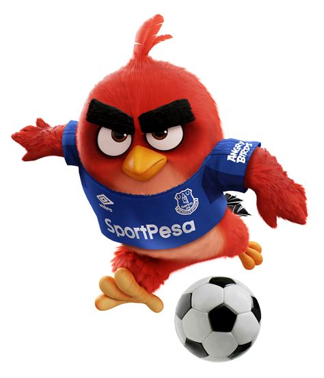 angry birds best angry birds enters the top flight of football with