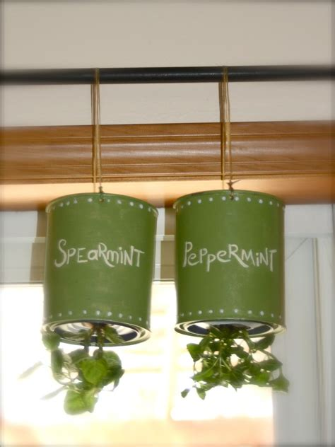 hanging herbs 25 best ideas about hanging herb gardens on pinterest wall herb gardens wall gardens and