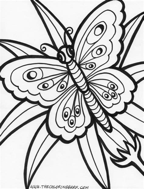 coloring pages of flowers printable free coloring pages of adult butterfly