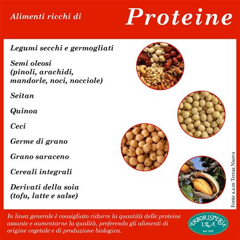 proteine alimentazione alimenti ricchi di proteine alimentazione e nutrienti
