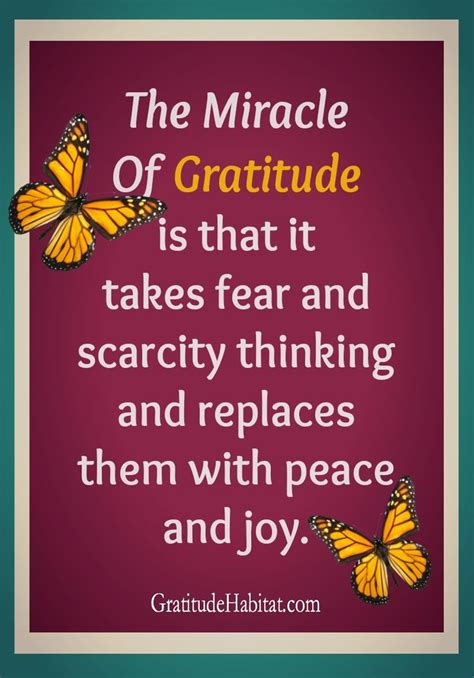 the gratitude journal for find happiness and peace in 5 minutes a day books 78 images about quotes inspiration and gratitude on