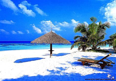 best hd free tropical island screensaver best background wallpaper