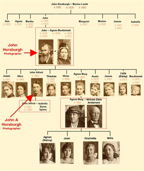 family tree dreams meaning interpretation and meaning