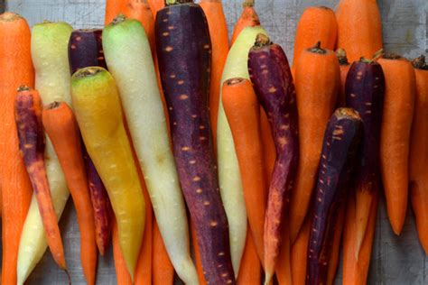Bites Organic Carrot Flavor roasted rainbow carrots ciao chow bambina