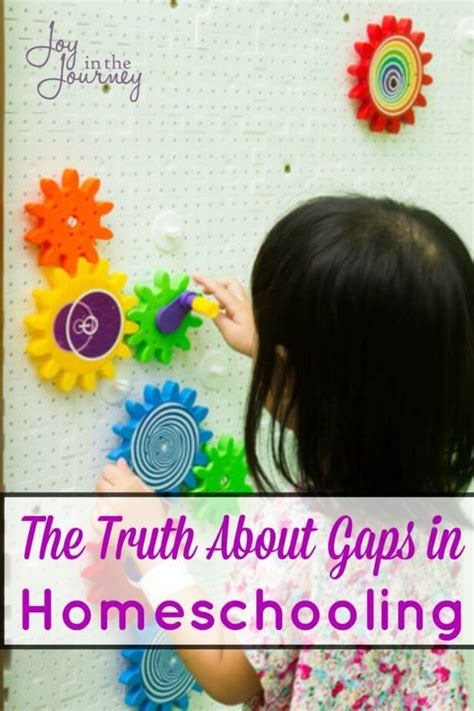 homeschooling do it afraid books the about gaps in homeschooling in the journey