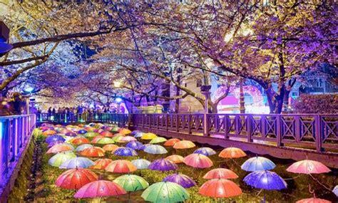 paket wisata korea selatan utara rp  juta  murah
