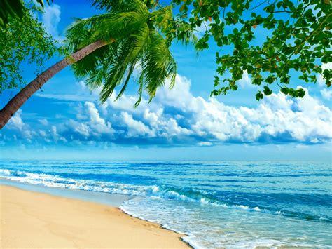 nature world best sea beach wallpaper tropics coast sea palma clouds nature wallpaper