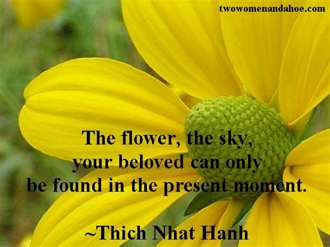Flower Garden Quotes Quotes About May Flowers Quotesgram