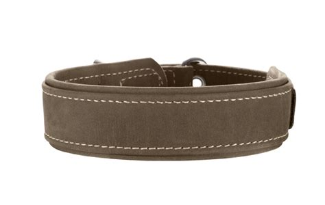 hunter comfort hunter collar hunting comfort www dog shop org