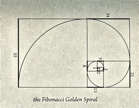 The Golden Section by