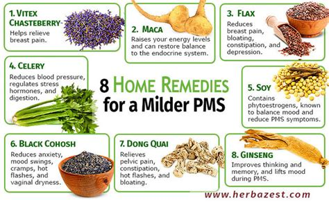best herbs for pms mood swings 8 home remedies for a milder pms herbazest com