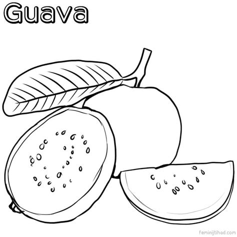 guava color free guava coloring pages printable coloring pages for