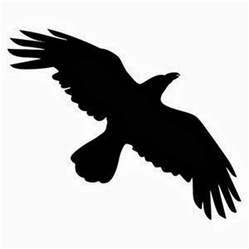 14 crow tattoo designs samples and ideas