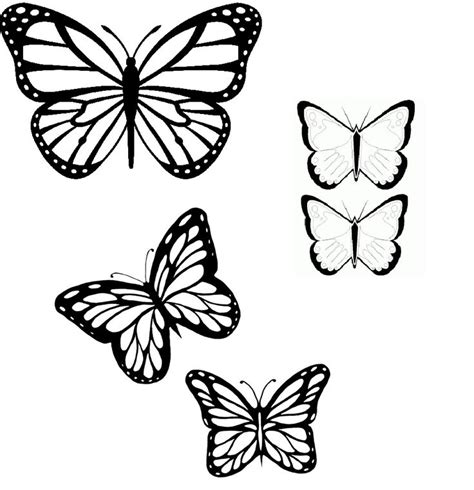 Butterflies Images Outline by Butterflies Outline