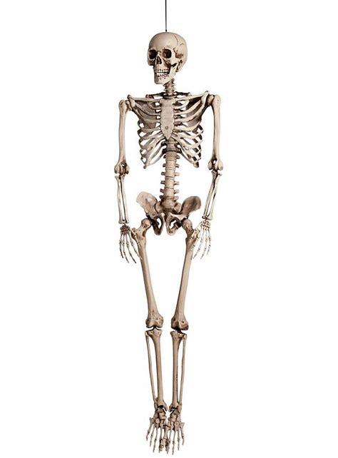 Skeleton Decoration by Size Skeleton Hanging Decoration