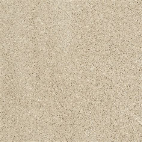 Exclusive Home Decor Items Shop Stainmaster Trusoft Luscious Ii S Sandstone