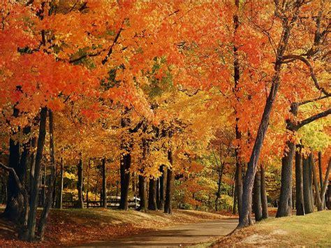 Farmers Almanac Florida by America The Beautiful In Autumn Peak Fall Foliage Dates For 48 States 50 Pics