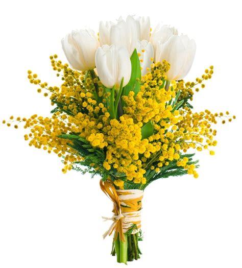 fiori e mimose tulipani bianchi e mimose mazzi di fiori inviare