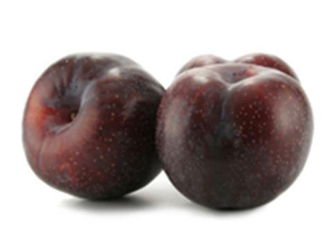 Buah Prunes Dan Jeruk kandungan gizi manfaat efek sing buah plum bagi kesehatan