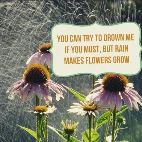 quotes flowers rain quotes pinterest flower